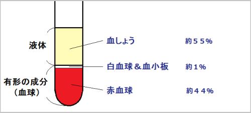 血液と赤血球とヘモグロビンについて分かりやすく説明してみた①