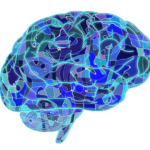 発達障害を遺伝として片づけない。母親の鉄不足が子供の脳に与える影響とは