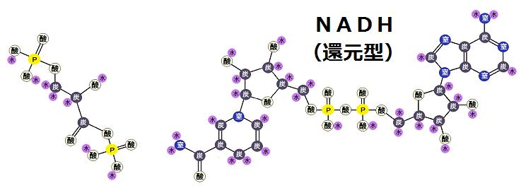 1,3-ビスホスホグリセリン酸とNADH