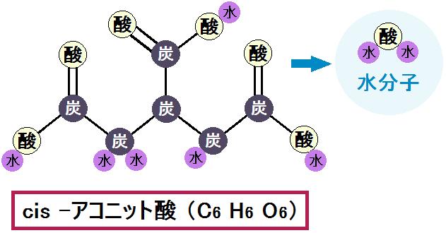 Cis-アコニット酸