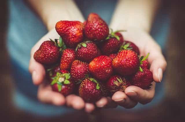 「美味しいと感じる食べ物は体に良い」と感覚だけで判断するのは危険です