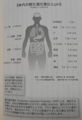 酸性食品とアルカリ性食品の定義と影響について分かりやすく説明してみた